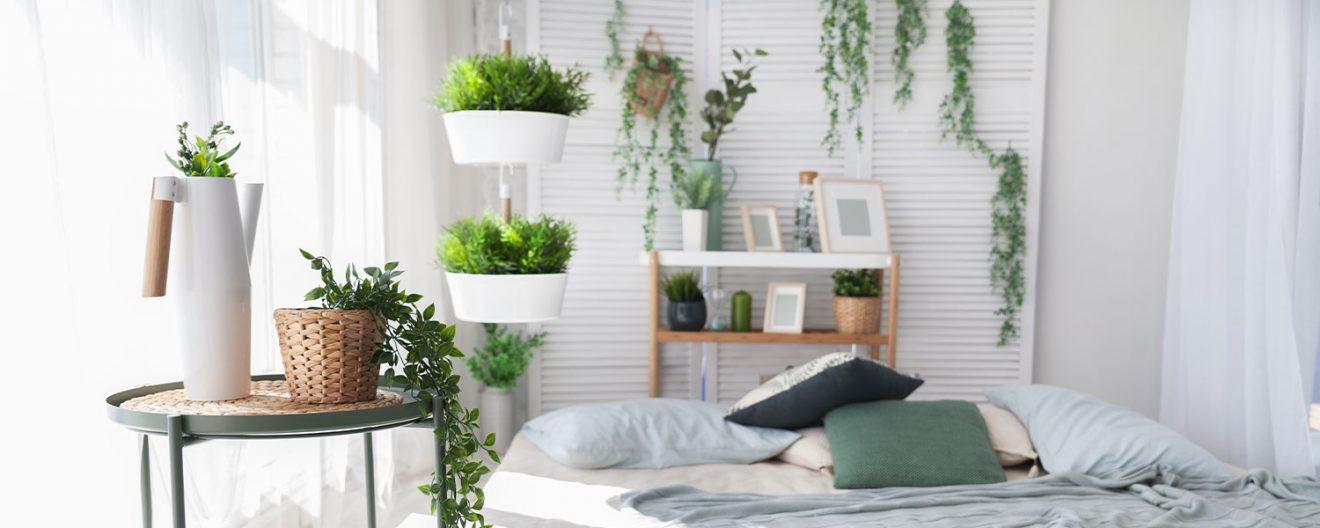 ATENŢIE, nu ţine aceste plante în dormitor! Consumă oxigenul şi îţi 'fură' somnul odihnitor