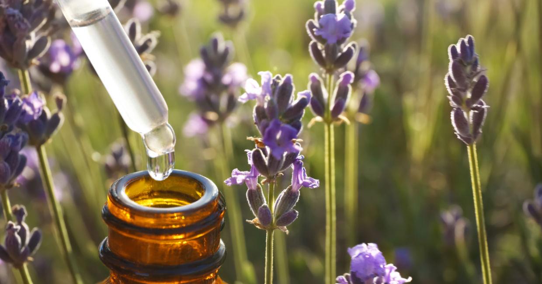 Cum să calmezi durerea de cap cu ajutorul uleiului esențial de lavandă sau de mentă