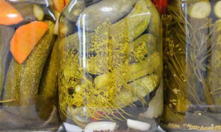 Castraveti murati pentru iarna. Compozitie pentru un borcan de 1 litru